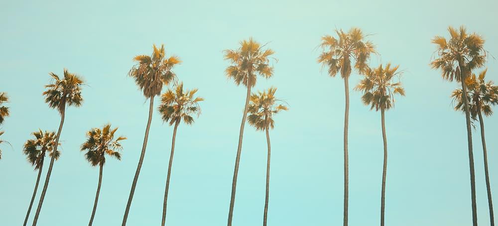 Le guide ultime pour un weekend à Los Angeles